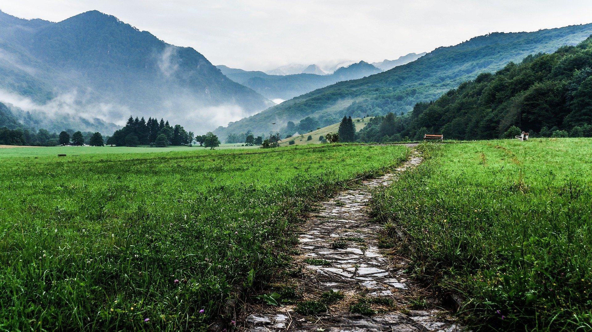 top 5 outdoor activities walk in the nature